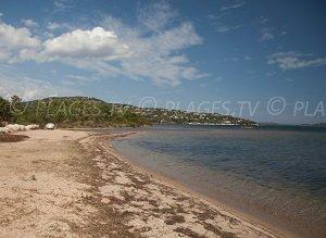 Spiaggia di Cala Verde