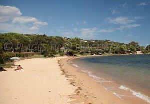 Spiaggia della Marina di Fiori