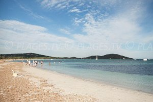 Spiaggia di Saint Cyprien - San Ciprianu