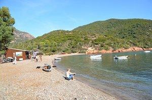 Spiaggia di Focaghia