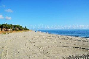 Spiaggia di Taglio-Isolaccio