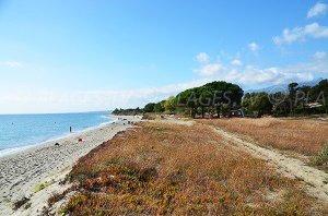 Talasani Beach - Talasani