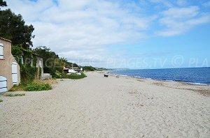 Prunete Beach - Cervione