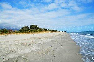 Spiaggia d'Alistro Nord