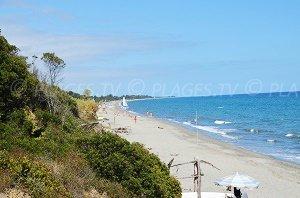 Bagheera Beach - Linguizzetta