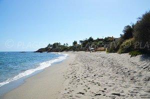 Spiaggia di Bravone