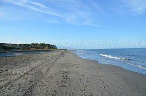 Spiaggia di Pineto - Mariana