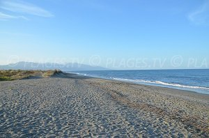 Lido de la Marana Beach - Borgo