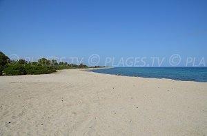 Spiaggia di Travo
