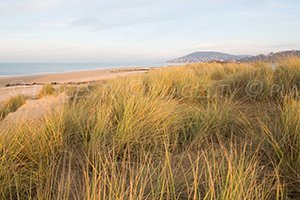 Plage Cap Cabourg - Cabourg