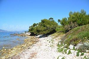 Laoute Beach - Iles de Lérins - Ste Marguerite