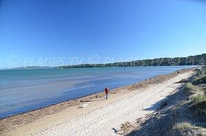 Spiaggia Badine Penisola di Giens