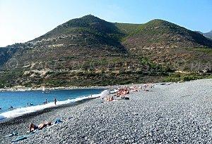 Spiaggia d'Albo