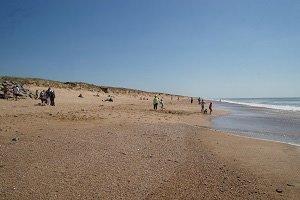 Plage des Dunes - Bretignolles-sur-Mer