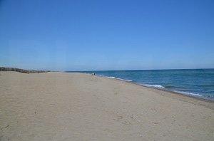 Sud Beach - Torreilles