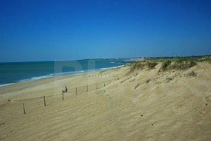 Petit Pont Beach  - Bretignolles-sur-Mer