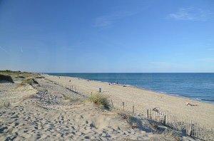 Sardinal Beach - Canet-en-Roussillon