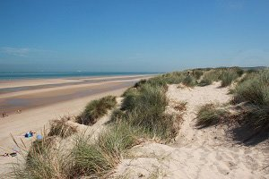 Dune Amont Beach - Wissant