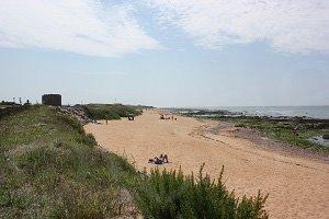 Spiaggia di Paracou - La Chaume