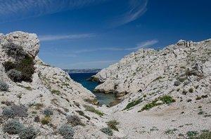 Escondelle Calanque - Ile de Frioul