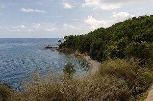 Spiaggia  Fava