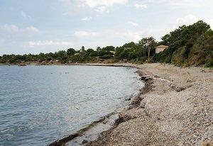 Spiaggia di Pianicci