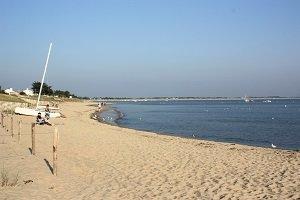 Spiaggia della Cantine