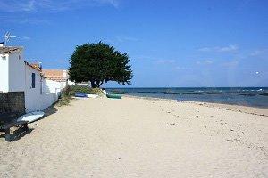 Spiaggia di Vieil