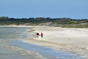 Marais Beach - Le Crotoy