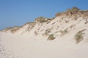 Dunes Beach - Portbail