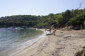 Spiaggia dell'Alycastre