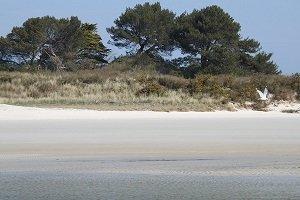 Horn Beach - Santec