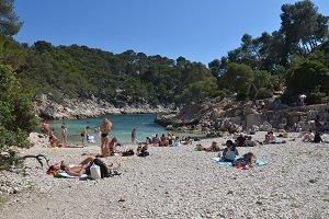 Calanque di Port Pin - Marseille
