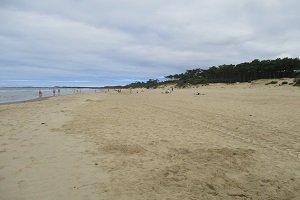 Grande Cote Beach - Saint-Palais-sur-Mer