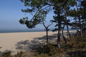 Pereire Beach - Arcachon