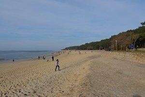 Spiaggia Abatilles Arbousiers - Arcachon
