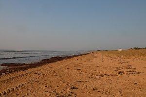 Spiaggia del Bois Soret