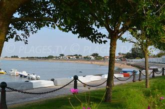 Beaches in La Flotte
