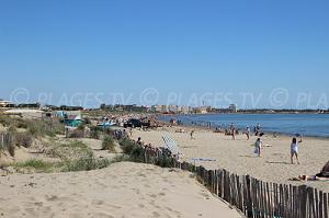 Spiagge Le Grau-du-Roi