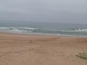 Spiagge Moliets-et-Maa