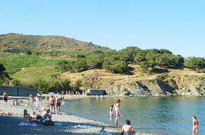 Beaches in Port-Vendres
