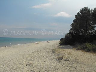 Beaches in Ghisonaccia