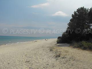 Spiagge Ghisonaccia