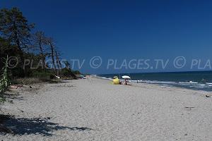 Spiagge Aléria