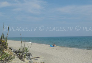 Beaches in Canale-di-Verde