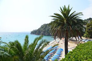 Beaches in Rayol-Canadel-sur-Mer
