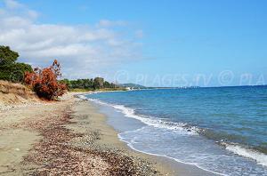 Beaches in Santa-Maria-Poggio