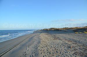 Beaches in Borgo