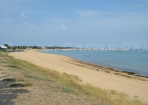 Beaches in Saint-Denis-d'Oléron