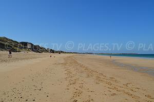 Spiagge Saint-Clément-des-Baleines